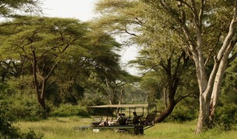Game Drive Bij Elephant Valley Lodge