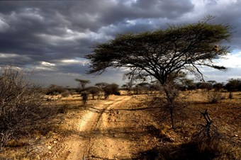 Onweer In Samburu National Park