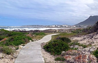 Whale path bij Hermanus